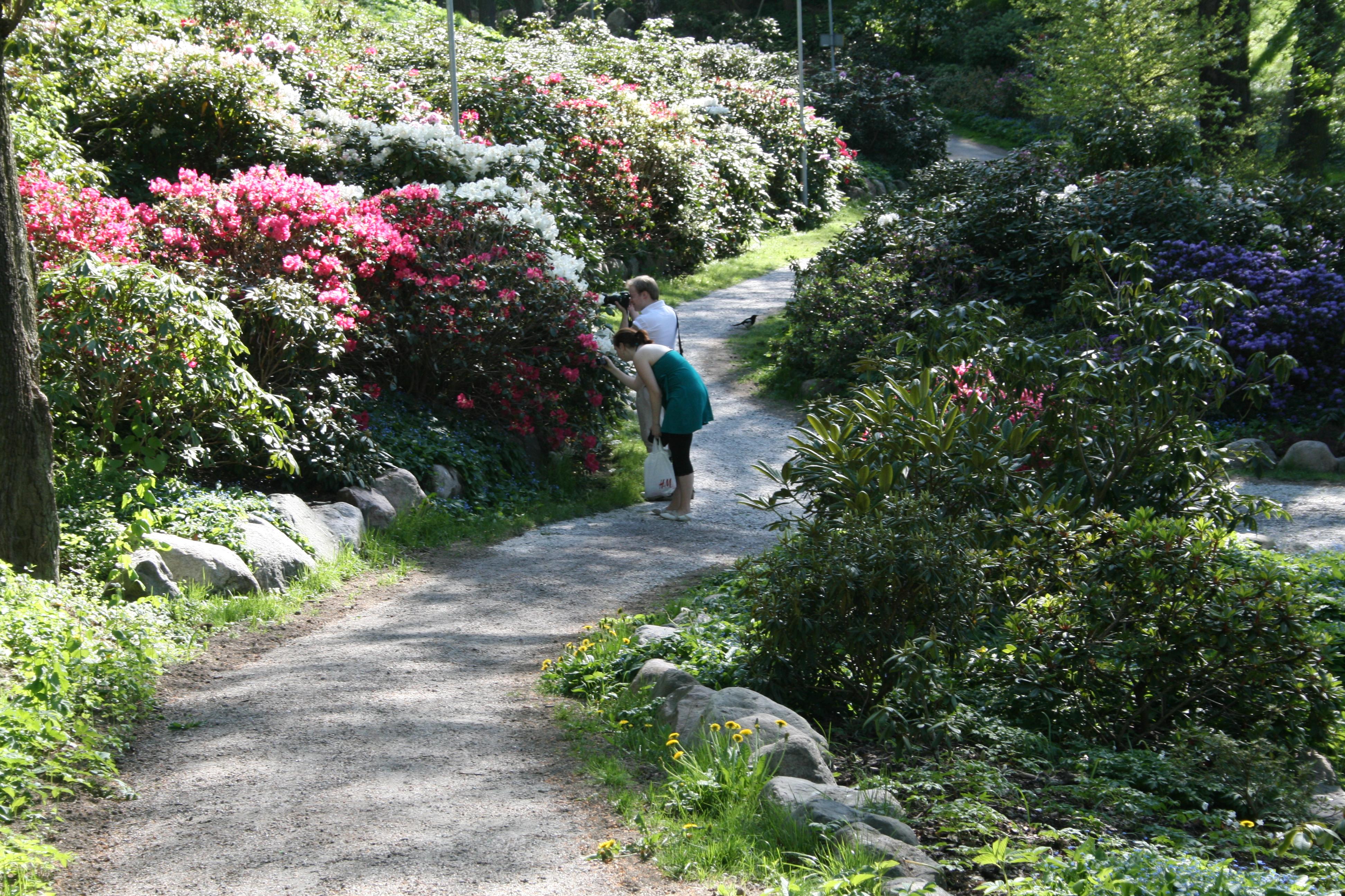 Fyra romantiska ställen i Norrköping